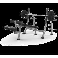Скамья для жима с отрицательным наклоном MATRIX MAGNUM A80 (серебристый)
